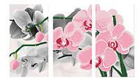 """Схема для вишивки бісером """"Орхідея сакраменто"""", триптих"""
