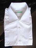 Рубашка подростковая 6Т-501 Star