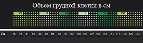 Компрессионное кофта SKINS A200 B60052005 , фото 2