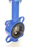 Затвор поворотный Баттерфляй GENEBRE тип 2109 Ду250 Ру16 диск нержавеющая сталь , фото 8