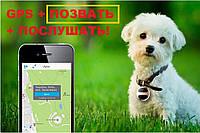 """GPS трекер для собак с функцией """"ПОЗВАТЬ"""""""