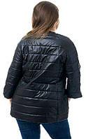 Куртка женская (54,56,58) АВА66