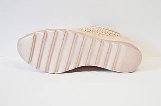 Кроссовки перфорированные пудра Alpino 0533, фото 3