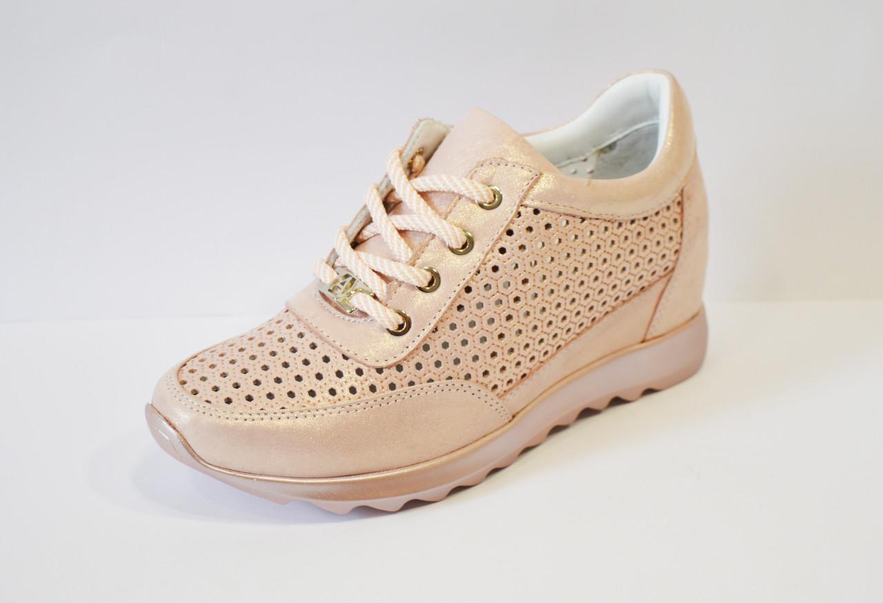 Кроссовки перфорированные пудра Alpino 0533