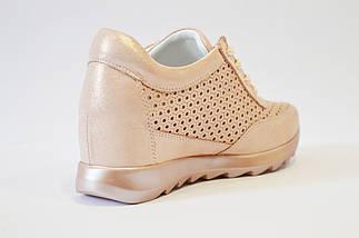 Кроссовки перфорированные пудра Alpino 0533, фото 2