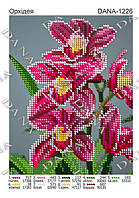 """""""Орхидея"""""""