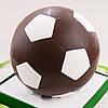 """Шоколадная фигура """"Футбольный мяч черный"""" классическое сырье. Размер: Ø225мм, вес 1800г"""