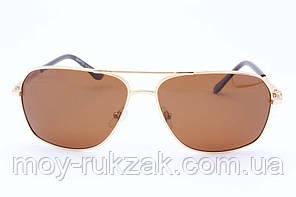 Cолнцезащитные очки Graffito, поляризационные, 780327, фото 2