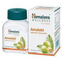Амалаки Хималая 60 табл (Amalaki Himalaya)
