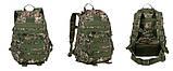 Рюкзак TAD тактический, походной, штурмовой, туристический, военный molle 38л, фото 3