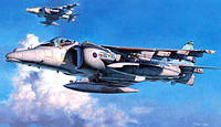 HARRIER GR Mk.7 ROYAL AIR FORCE 1/48  Hasegawa PT36
