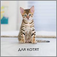 Purina pro plan -супер премиум корм для котят