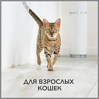 Purina Pro Plan -супер премиум корм для взрослых кошек