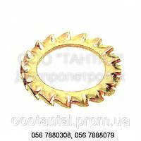 Шайба пружинная зубчатая с наружными зубьями бронзовая от Ø2 до Ø30, ГОСТ 10463-81, DIN 6798 А