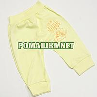 Штанишки на широкой резинке р. 56 демисезонные ткань ИНТЕРЛОК 100% хлопок ТМ Авекс 3297 Желтый В