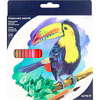 Карандаши акварельные Kite 24 цвета