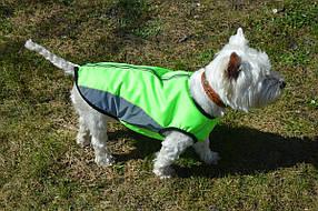 Жилет для собак Отражающий №2 35х54, фото 2