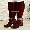 Женские бордовые сапоги на невысоком каблуке, натуральная кожа и замша, фото 3