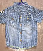 Джинсовая рубашка для мальчиков S&D оптом, 1-5 лет.