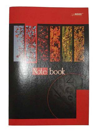 Зошит для конспектів Brisk Office, А4, 48 арк., клітинка, ТВ-25#, фото 2