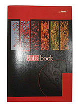 Зошит для конспектів Brisk Office, А4, 48 арк., клітинка, ТВ-25#