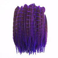 Перья Фазана декоративные (Перо) Фиолетовые 10-15 см 10 шт/уп, фото 1