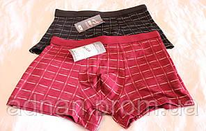 Нижнее мужское белье, купить нижнее мужское белье оптом со склада, 1800 NBM-3001
