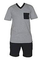 Пижама мужская трикотажная 03251 Tomas футболка и шорты, р.р.44-62