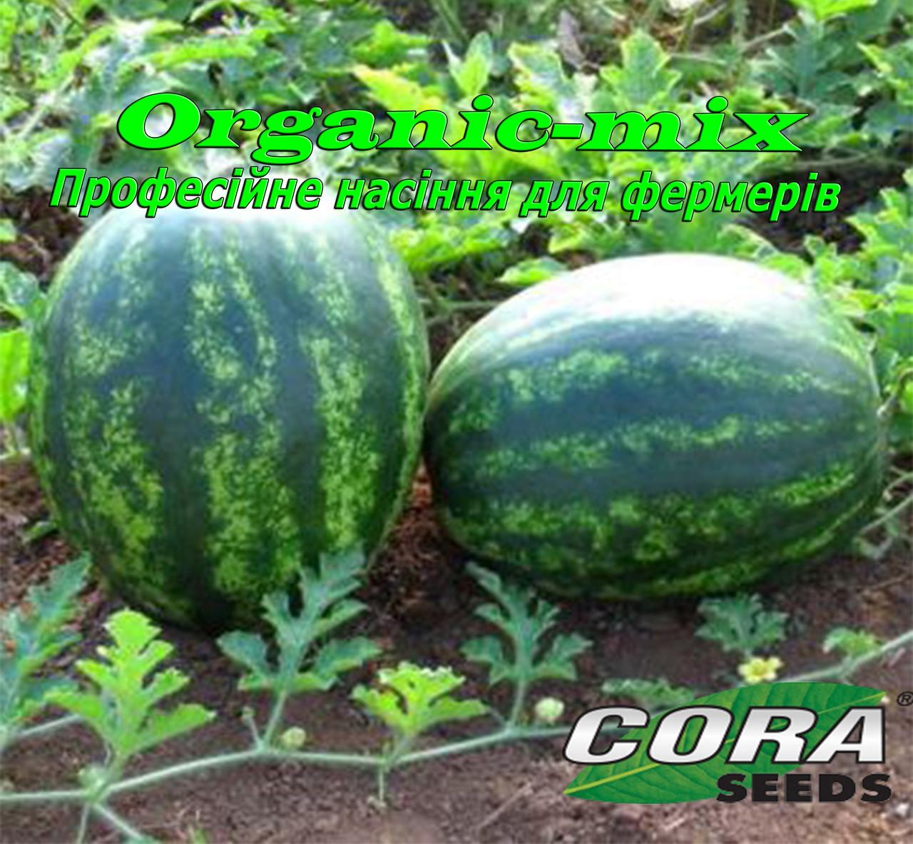 Ультра ранний Арбуз Бонд F1 / Bond F1, Cora Seeds, 1000 семян