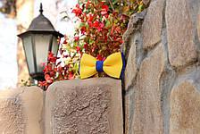 Галстук-бабочка I&M Craft двухцветный жёлтый с синим (050059), фото 3