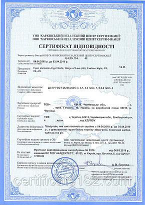 Сертификация продукции/товаров потребительских на 1 год, фото 2