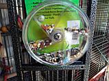 Колесо-Кормушка-Игрушка. (Гигантское колесо), фото 4
