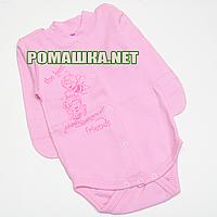 Детский боди с длинным рукавом р. 56 демисезонный ткань ИНТЕРЛОК 100% хлопок ТМ Авекс 3149 Розовый А