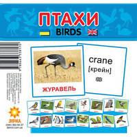 """Карточки - мини для малышей """"Птицы"""""""