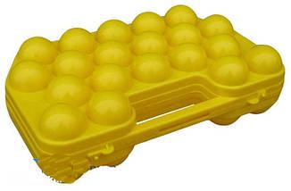 Лоток из пластика на 20 яиц 1-й сорт, 18х29см