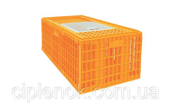 Ящики для перевозки индюков, гусей, уток