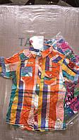 Pубашки для мальчиков S&D 6-14 лет. Супер цена!!!