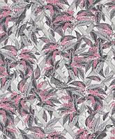 Brassica Pink Grey