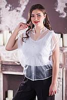 Стильная женская блуза №2125