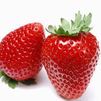 Біодобрива без хімії для полуниці, огірочків, помідорчиків, винограду