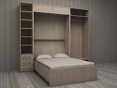 Шкаф-кровать трансформер Платон 102