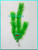 Растение 36см №3