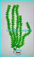 Растение 36см №16