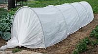 Парник Подснежник 4 метра - доступная цена