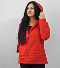 Демісезонна куртка утеплена. Нова колекція QARLEVAR 2XL-6XL (46-56), фото 2