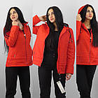 Демисезонная утепленная куртка. Новая коллекция QARLEVAR   2XL-6XL (46-56), фото 3