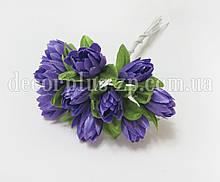 Тюльпанчики фиолетовые