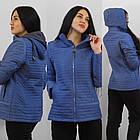 Демисезонная утепленная куртка. Новая коллекция QARLEVAR   2XL-6XL (46-56), фото 6