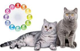 Витамины для кошек и котов