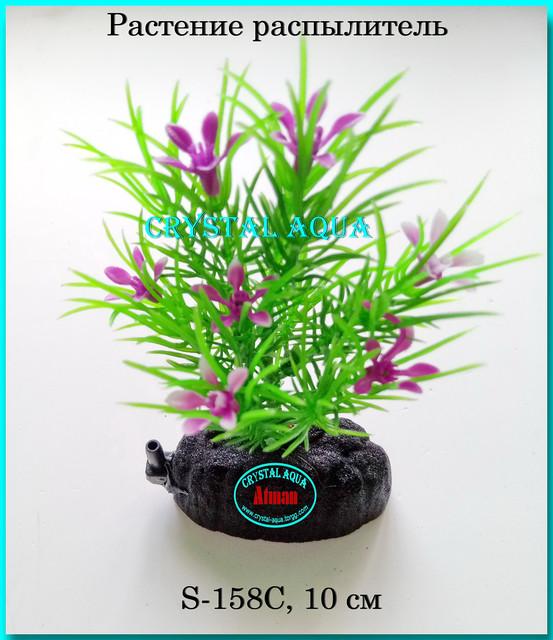 Растения S, 10 см